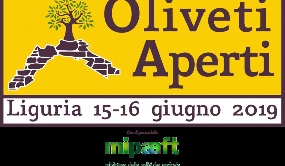 logo-oliveti-aperti-m